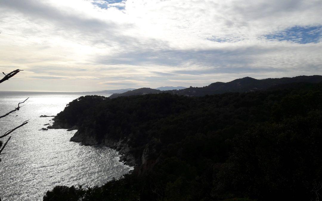 Descobreix Lloret de Mar: Camí de ronda fins a Tossa